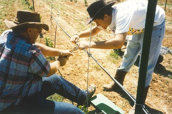David and Larry Kuhlken installing irrigation on the original planting of Kuhlken Vineyards in 1995, Bell Mountain AVA, Texas